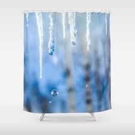 Icicles and drops in a birch grove Shower Curtain