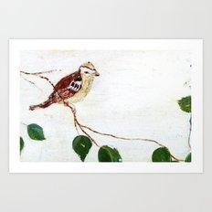 Bird painted on wood Art Print