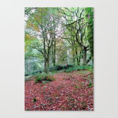 Thornthwaite Canvas Print
