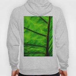 Leaf veins Hoody