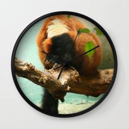 Sleeping Monkey Photography Print Wall Clock