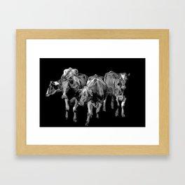 cows 6 Framed Art Print