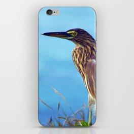 Pond Heron on Grass Varkala iPhone Skin