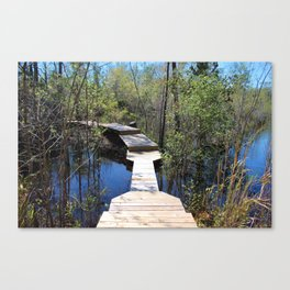 Crossing The Swamp Canvas Print