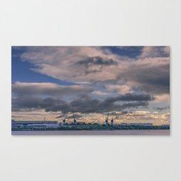 Water birds Canvas Print