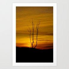 Lone tree sunset Art Print