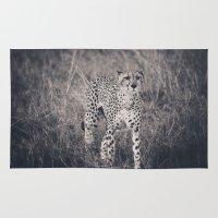 cheetah Area & Throw Rugs featuring Cheetah by Chad Madden