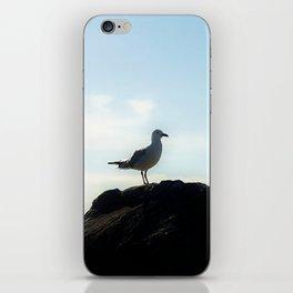 Bird's eye View iPhone Skin