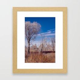 Winter Woods at Pahranagat National Wildlife Refuge, NV Framed Art Print