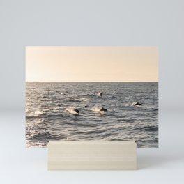 Jumping Dolphins at Sunset Mini Art Print