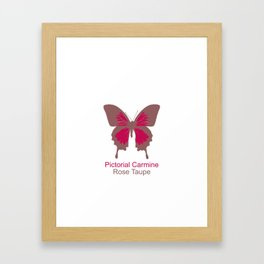Butterfly 1 Framed Art Print