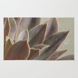TEXTURES: Succulent Looks East Rug