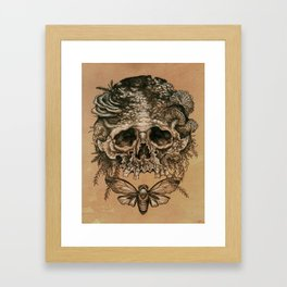 Skull with Cicada Framed Art Print