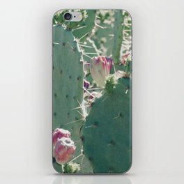Prickly Beauty iPhone Skin