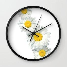Shasta Daisies Wall Clock