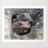 Toad Love Art Print