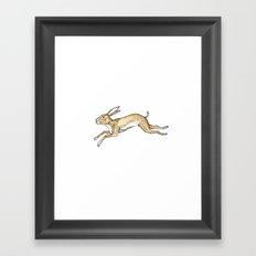Spring rabbit Framed Art Print