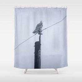 Quand le hibou chante Shower Curtain