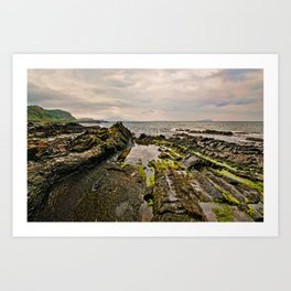 Low tide rocks Art Print