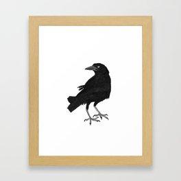 Blackbird - Tordo Framed Art Print