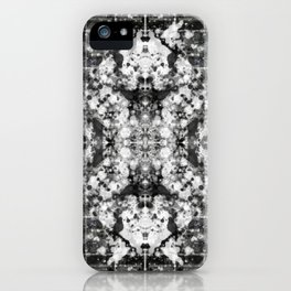 The Anxiolytic Theorist iPhone Case