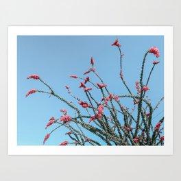 Pink Wildflowers // Cactus Plant Blue Sky Green Long Alien Brances Light Pink Flowers Art Print