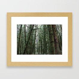 Into the Forest x Oregon Coast Framed Art Print