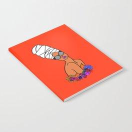 Ayana Notebook