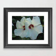 pic 038 Framed Art Print