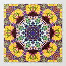 Concentric Lines of Color Canvas Print