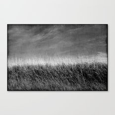 Nature in black and white ~ 4 Canvas Print