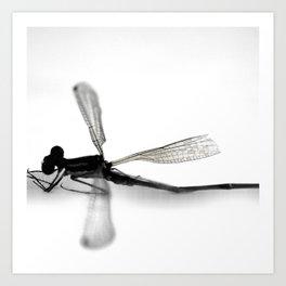 MINUTIAE / 05 Art Print