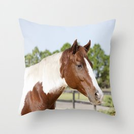 Sonny the Paint Throw Pillow