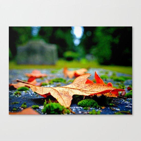 Late Autumn leaf Canvas Print