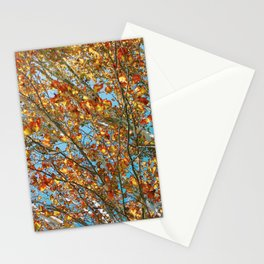 Leaves at Matilda Bay Stationery Cards