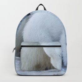 Polar Bear Mother and Cub portrait. Backpack