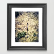 In My Path Framed Art Print