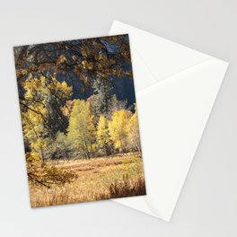Yosemite Fall Color Cook Meadow 11-8-19 Stationery Cards