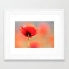 Poppy Dream Framed Art Print
