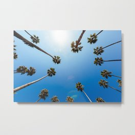 Palm Trees in Los Angeles Metal Print