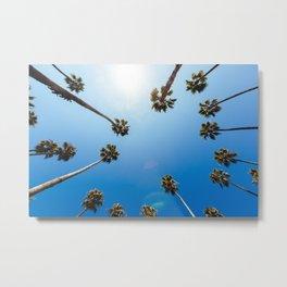 Palm Trees in Los Angeles Metal Print