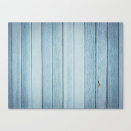 Bright blue wood timber texture wall Canvas Print