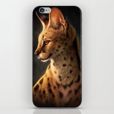 Enigmatic Soul iPhone & iPod Skin