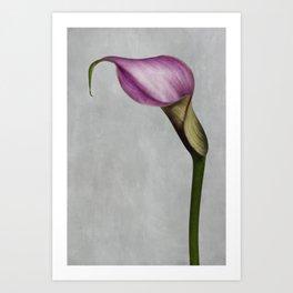 Quiet Moment Art Print