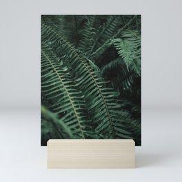 Forest Ferns Mini Art Print
