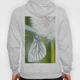 Butterfly dandelion Hoody