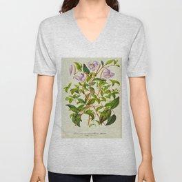 Clematis Campaniflora Vintage Botanical Floral Flower Plant Scientific Illustration Unisex V-Neck