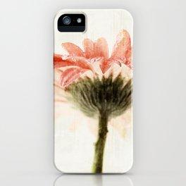Gerbera Turnaround iPhone Case