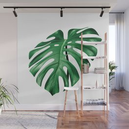 Split leaf philodendron leaf isolated on white Wall Mural