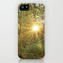 Sunrise in the Hoh Rainforest 2.  iPhone Case